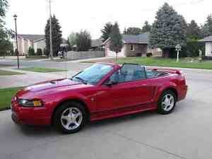 2001 Mustang convertible for sale London Ontario image 1