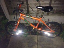 Juicy ammoco bike
