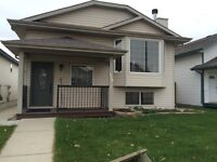 Beautiful remodelled home in red deer