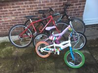 Mountain/ kids bikes