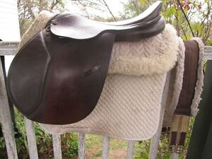"18"" CC English Saddle and Misc. Tack for Sale Kingston Kingston Area image 1"