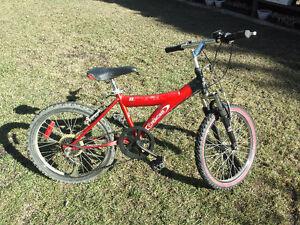 """Kids bike 19.5"""""""