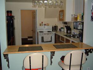 1bedroom bachelor apt for rent