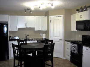 Gr8 view, location, condition, quality and price. Lot of storage Edmonton Edmonton Area image 5