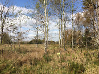 2 acre lot near Canadian Golf & Country Club