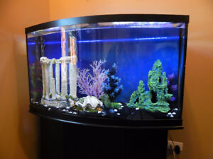 50 GAL - NATIONAL GEOGRAPHIC AQUARIUM - BOW FRONT TANK