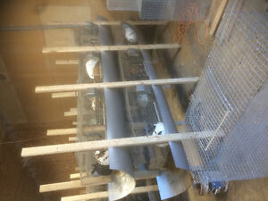 Cages for sale Edmonton Edmonton Area image 1
