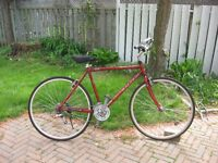 Raleigh Cross-Lite Bicycle