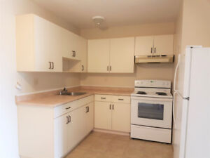 North Shore - Dec 1st - 2 Bedroom Ground Floor Apartment