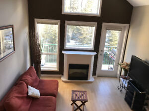Looking for a mature clean female Roommate - 2 bedroom condo