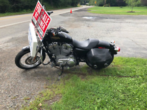 2008 Harley-Davidson XL883L For Sale