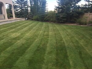 Lawn Care services at great prices and services!!