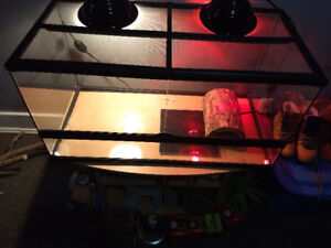 Large Reptile Cage and Equipment