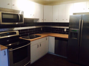 Luxury 3 bedroom Apartment for Rent July 1st $1450 in Bluequill