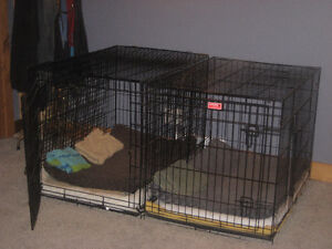 2 wire dog crates for sale