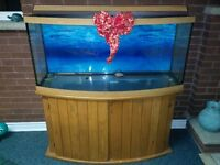 72 GALLON BOW FISH TANK AND STAND