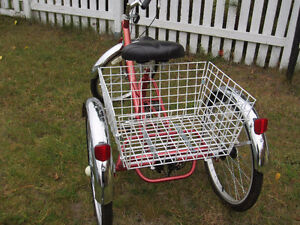 tricycle,adult