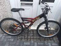 Giant box1, adults 24 speed unisex mountain bike £65