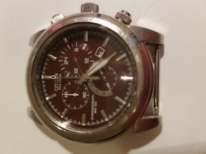 citizen eco drive luxury watch