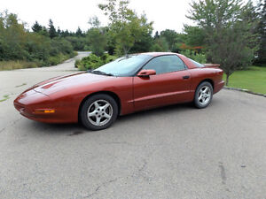 1997 Firebird, Priced for Quick Sale