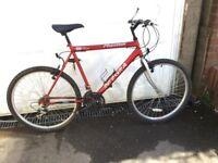 Men's Mountain Bike in good condition