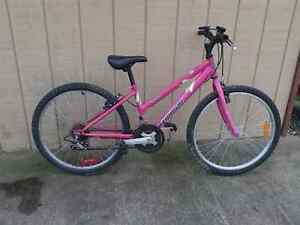 GIRLS 21 SPEED TRIUMPH MOUNTAIN $25