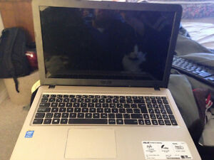 Brand new Asus laptop $300-$400