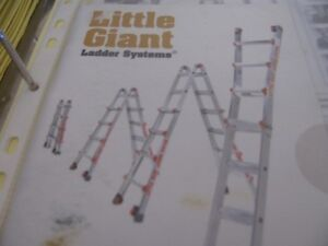 Little Giant Ladder with accessories.