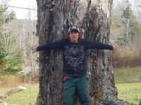 Tree Climbing and Removal