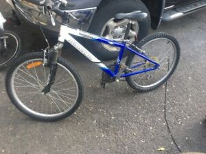 Raleigh bicycle - youth sized for 8-12 year old.  $60