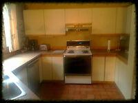 Armoires de cuisine, comptoir avec évier et robinetterie