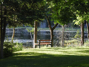 ENJOY PEACE & SERENITY AT YOUR VERY OWN COTTAGE/4 SEASON HOME