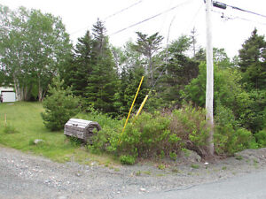 26-28 CROSS MEADOW, I ACRE BOREAL FOREST...CBS. St. John's Newfoundland image 13