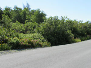 155-161 COUNTRY PATH ROAD - LONG POND, CBS St. John's Newfoundland image 2