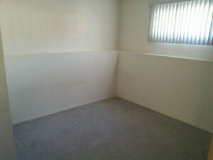 High ceiling basement suite in bi-level house. 2 bedroom,
