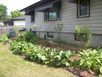 Spring & Summer Lawn &  Property Maintenance