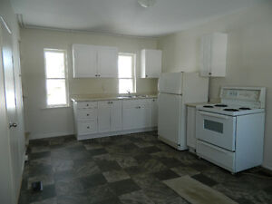 Small & affordable 1 bedroom apartment for rent in Lindsay