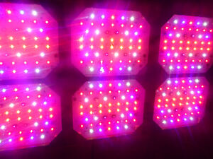 BEST EVER!! New-Age LEDs Mega 900 Watt GROW LIGHT w/ 4 switches!