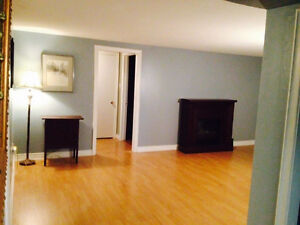 Beautiful two bedroom basement apartment