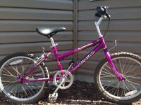 Children's purple mountain bike