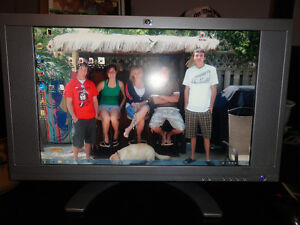 """21"""" LCD Flat Screen Rectangular Monitor with Both Cables"""