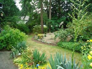 Inexpensive acreage  South surrey, motivated Seller..financing