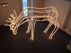 Light up outdoor reindeer