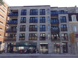 Downtown Montreal Condo Centre-Ville Furnished Meublé