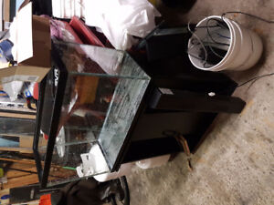 Aquarium Fish Tank with stand and lots of extras