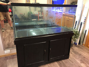 90 Gallon Aquarium with Stand