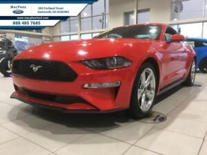 2019 Ford Mustang EcoBoost Fastback  - Leather Seats