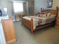 Pine Queen Bedroom Set