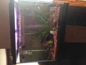 56 Gallon Aquarium