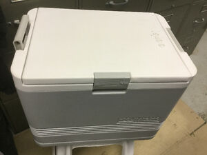 Igloo Koolmate electric cooler/warmer